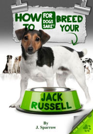 How to Breed your Jack Russell - Jack Sparrow