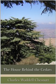 The House Behind the Cedars - Charles W. Chesnutt