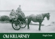 Old Killarney - Hugh Oram