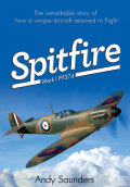 Spitfire Mark I P9374 - Andy Saunders
