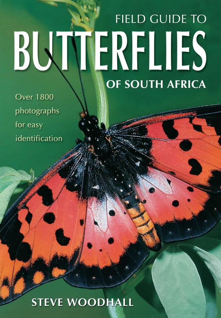 Field Guide to Butterflies of South Africa als eBook von Steve Woodhall - New Holland Publ.Ltd.