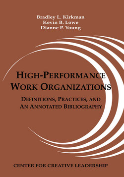 High-Performance Work Organizations als eBook von Bradley L. Kirkman, Kevin B. Lowe, Dianne P. Young - Center for Creative Leadership
