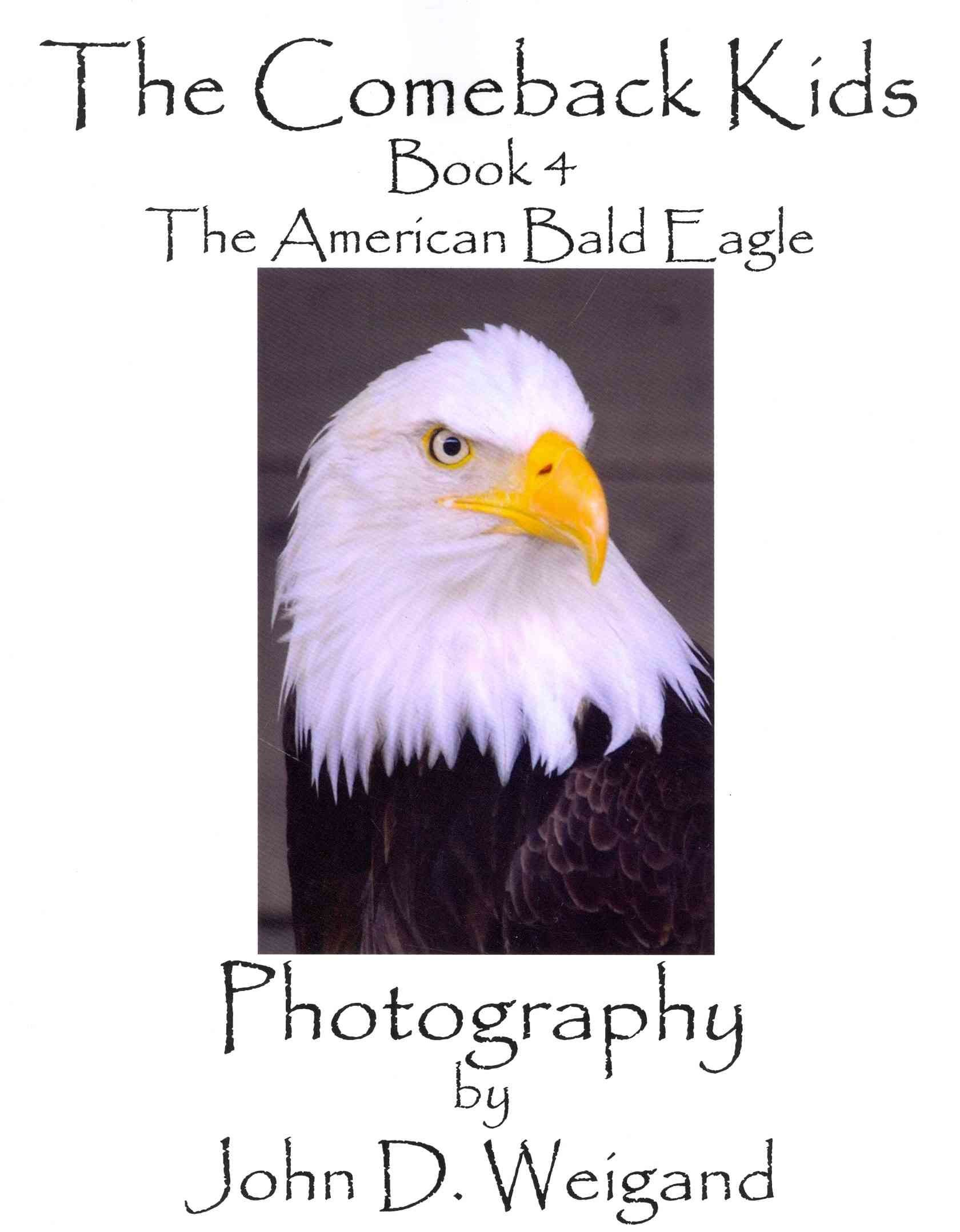 The Comeback Kids, Book 4, The American Bald Eagle - John D Weigand