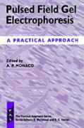 Pulsed Field Gel Electrophoresis: A Practical Approach