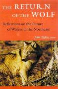 The Return of the Wolf: Reflections on the Future of Wolves in the Northeast