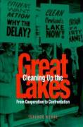 Cleaning Up the Great Lakes: From Cooperatioon to Confrontation
