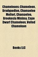 Chameleons: Chameleon