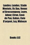 Landes: Stade Montois