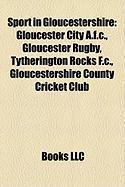 Sport in Gloucestershire: Gloucester City A.F.C.