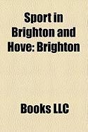 Sport in Brighton and Hove: Brighton Bears