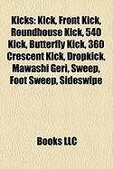 Kicks: Kick, Front Kick, Roundhouse Kick, 540 Kick, Butterfly Kick, 360 Crescent Kick, Dropkick, Mawashi Geri, Sweep, Foot Sw
