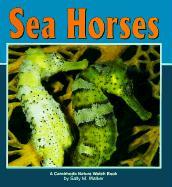 Sea Horses - Walker, Sally M.