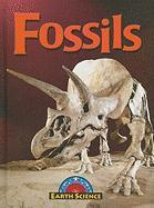 Fossils - Lappi, Megan