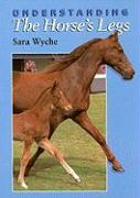 Understanding the Horse's Legs