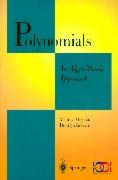 Polynomials: An Algorithmic Approach