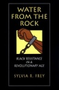 Water from the Rock: Black Resistance in a Revolutionary Age - Sylvia R. Frey
